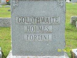 Artemas Hatch Goldthwaite