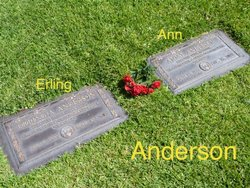 Erling A Anderson