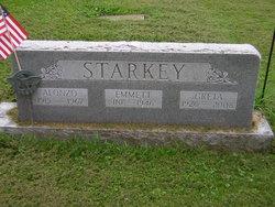 Alonzo Edson Starkey