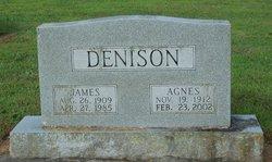 Agnes Elizabeth <i>Brandon</i> Denison