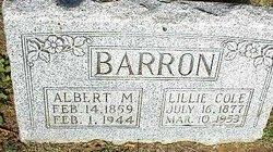 Lillian Ann <i>Cole</i> Barron