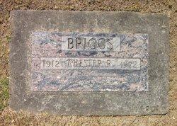 Chester R. Briggs