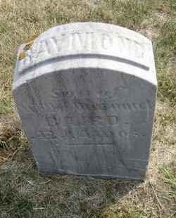 Raymond J Baird
