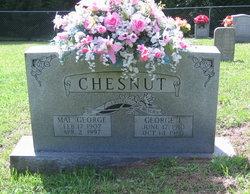 George I. Chestnut