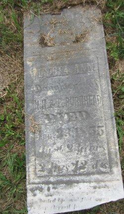 Lydia Ann Burkhead