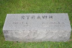 Hannah Araminta Minta <i>Brown</i> Strawn
