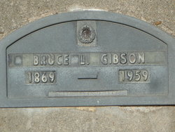 Bruce Lee Gibson