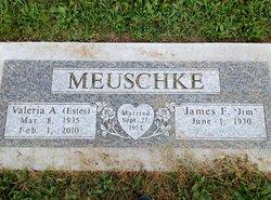 Valeria Ann <i>Estes</i> Meuschke