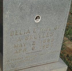 Delia E <i>Walden</i> Broyles