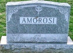 Jane Agnes <i>Shaw</i> Amorosi