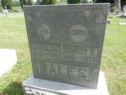 Robert Henry Bales