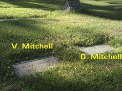 Olive Evelyn <i>Burnham</i> Mitchell