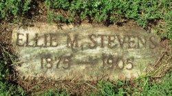 Ellie M Stevens