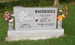 Larry D Baldridge