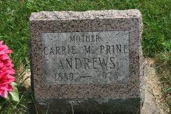 Carrie M <i>Larson</i> Andrews