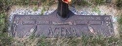 Andrew H Agena