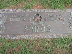 Elizabeth A. Lizzie <i>Oakes</i> Amos