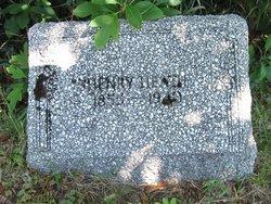 Henry Orlando Heath