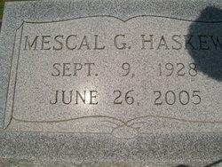 Ann Mescal <i>Grantham</i> Haskew