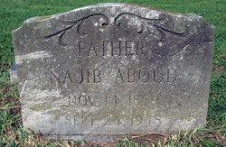 Najib Jibsam Aboud