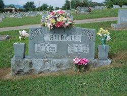 Goldia Annie Rachel <i>Dills</i> Burch