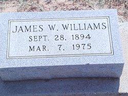 James Webster Williams