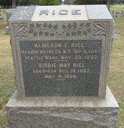 Almeron F. Rice