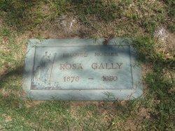 Rosa <i>Kovacs</i> Gally