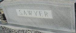 Robert Gilbert Sawyer