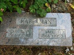 Axel F Haberman