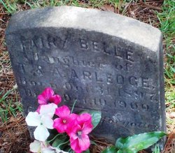 Fairy Belle Arledge