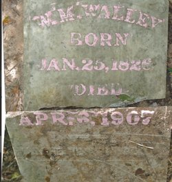 William M Walley