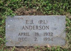 E J Anderson