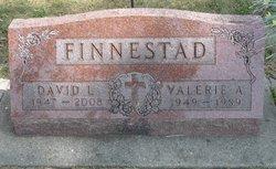 David L. Finnestad