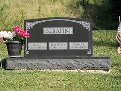 Donald E Serafini