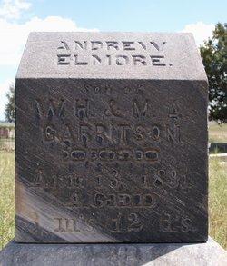 Andrew Elmore Garritson