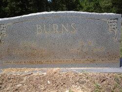 Benjamin Walter Ben Burns