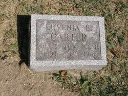 Luvenia E Carter