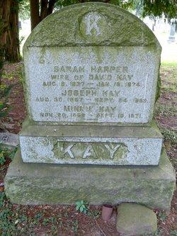 Frances A <i>Birck</i> Kay