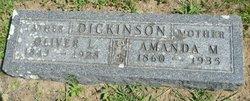 Amanda M Dickinson