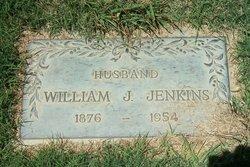 William James Jenkins