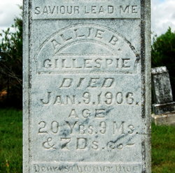 Allie B Gillespie