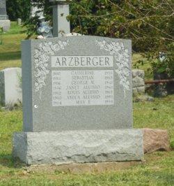 Viola <i>Arzberger</i> Aluisio