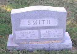 Lucy Ann <i>Baggott</i> Smith