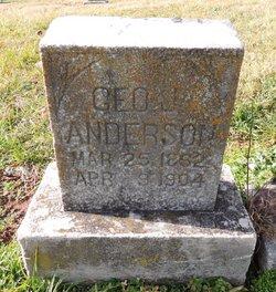 George J. Anderson