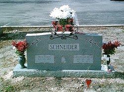 Carolyn Ann <i>Geiger</i> Schneider