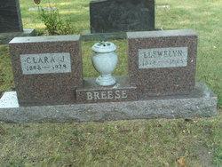 Clara <i>Jacobson</i> Breese