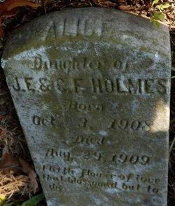 Alice Holmes
