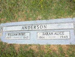 Sarah Alice <i>Arnold</i> Anderson
