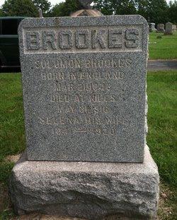 Selina Ann <i>Lenton/Linton</i> Brooks